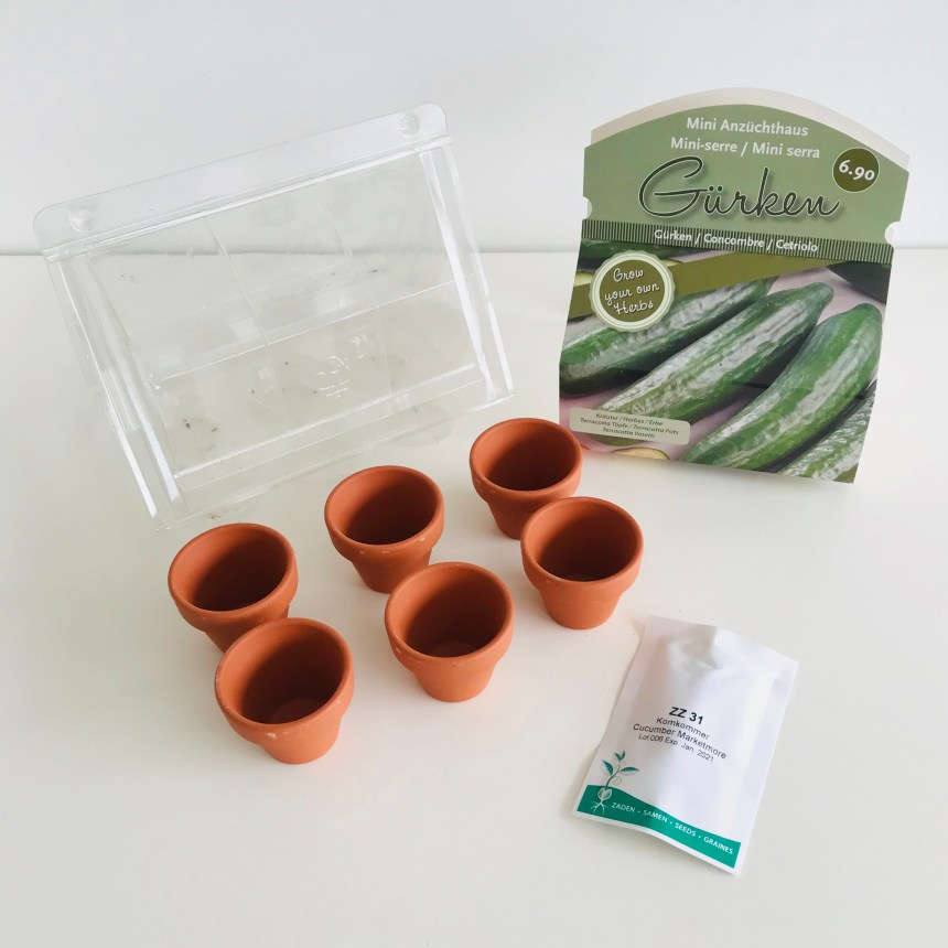 Mission Indoor Garten Kräuter Set Gurken Inhalt