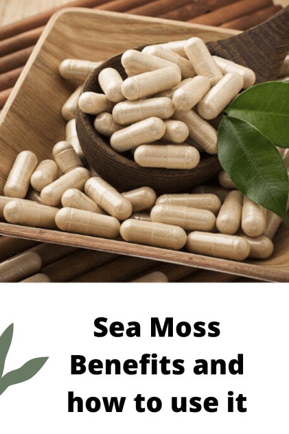 Sea moss benefits for humab body and how will improve fertility. How to use sea moss and where to buy. Irish Moss capsules to buy online