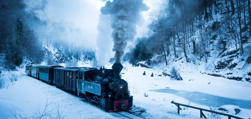 Steam train offer you