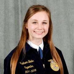 Madison Bader, VP 2018-19