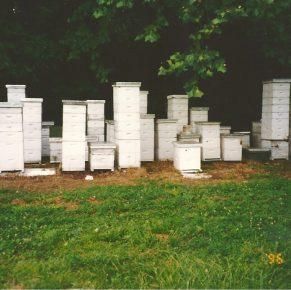 Missouri Honey & Honey Products