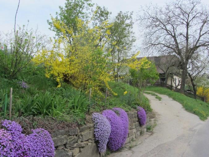 Village street of Litzendorf