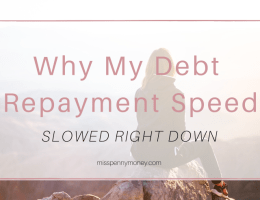 Debt Repayment Motivation