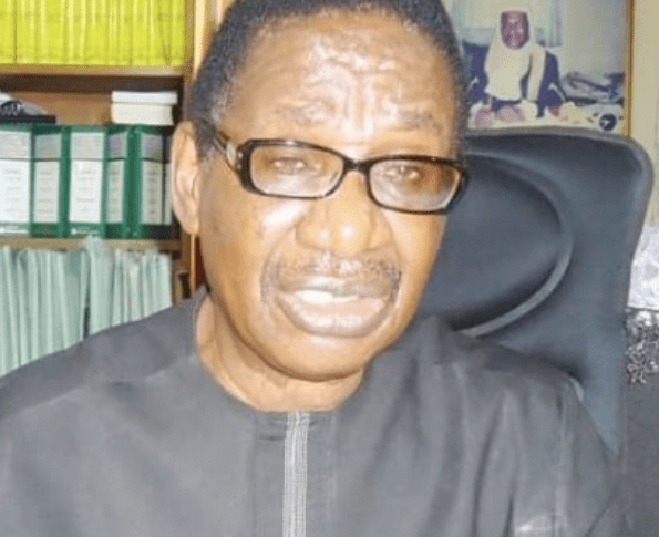 Forget NYSC certificate, we can not afford to lose Kemi Adeosun – Itse Sagay