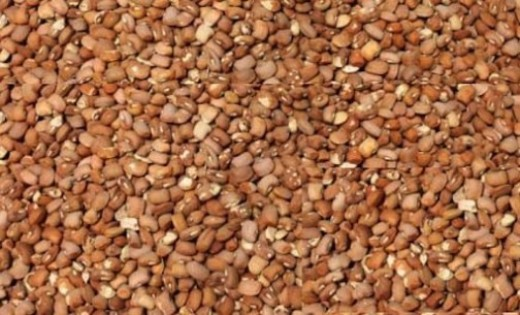 Beware of poisoned beans – CPC warns Nigerians