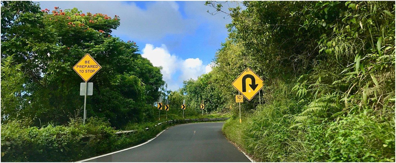 Driving Hana Highway
