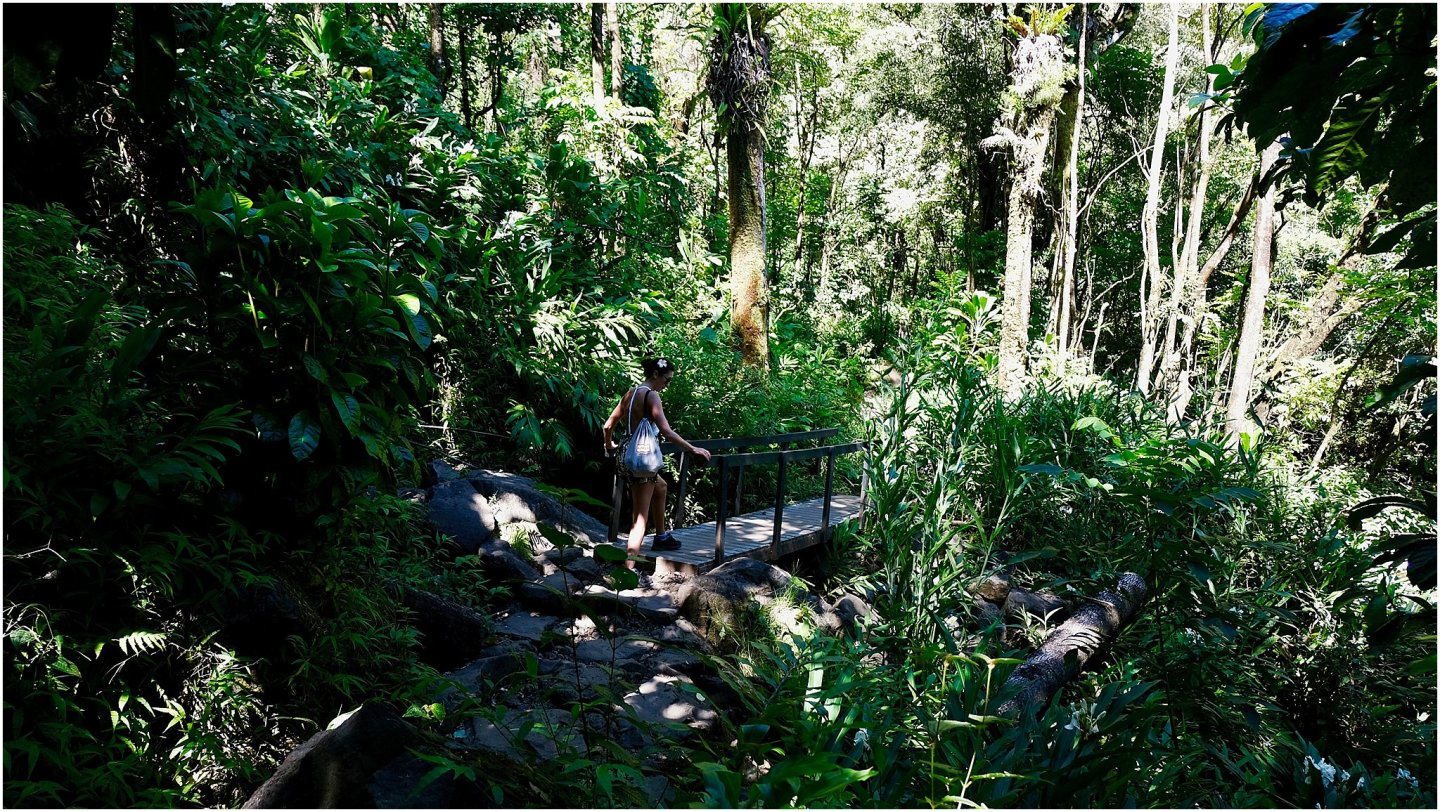 Hiking Hana The road to Hana maui - Road or destination? Guest Post by Lara Olivia Miss Portmanteau? Club Elsewhere - The World's Travel Diary edited by Rosie Bell