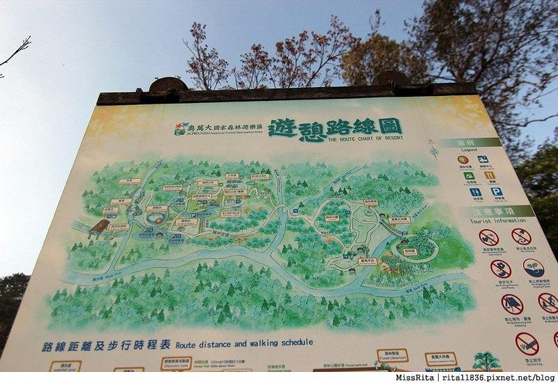 清境觀光巴士 奧萬大森林遊樂區 賞楓39-
