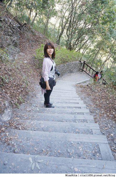 清境觀光巴士 奧萬大森林遊樂區 賞楓33