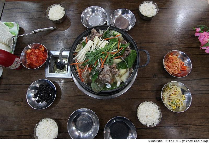 韓國 好玩 好吃 好買 旅遊推薦 首爾 南怡島 明洞 滑雪3