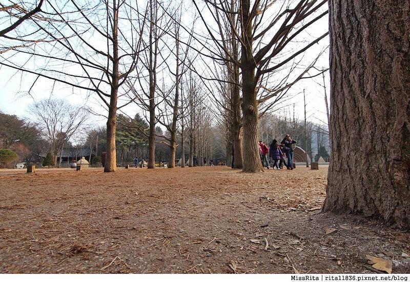 韓國 好玩 好吃 好買 旅遊推薦 首爾 南怡島 明洞 滑雪8
