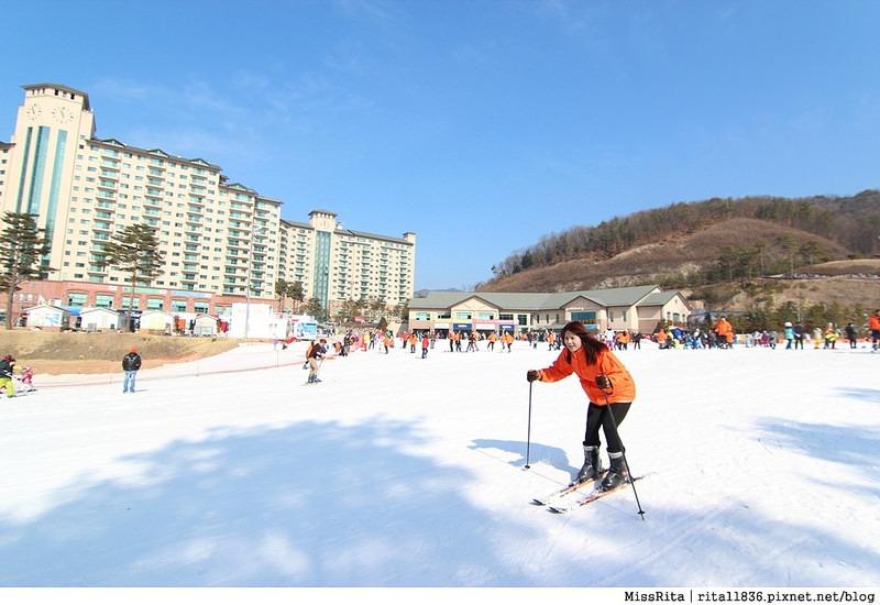 韓國 好玩 好吃 好買 旅遊推薦 首爾 南怡島 明洞 滑雪16