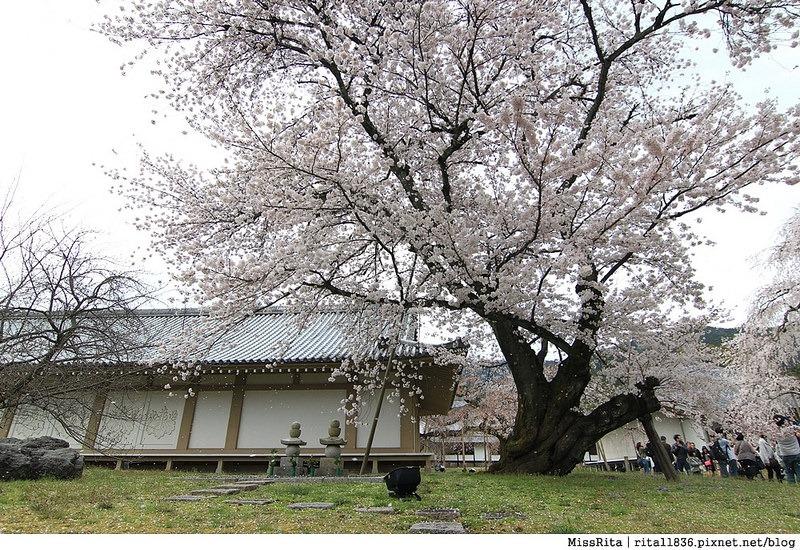 日本上網 大阪上網 wifi上網 日本wifi 桔豐wifi上網 jetfi wifi分享機 日本自由行 日本自助 關西自助 京阪自助16