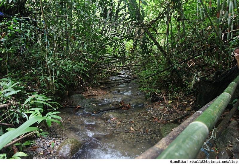 馬來西亞自由行 馬來西亞 沙巴 沙巴自由行 沙巴神山 神山公園 KinabaluPark Nabalu PORINGHOTSPRINGS 亞庇 波令溫泉 klook 客路 客路沙巴 客路自由行 客路沙巴行程41