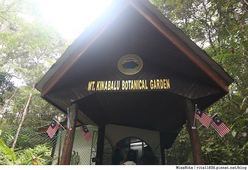 馬來西亞自由行 馬來西亞 沙巴 沙巴自由行 沙巴神山 神山公園 KinabaluPark Nabalu PORINGHOTSPRINGS 亞庇 波令溫泉 klook 客路 客路沙巴 客路自由行 客路沙巴行程15