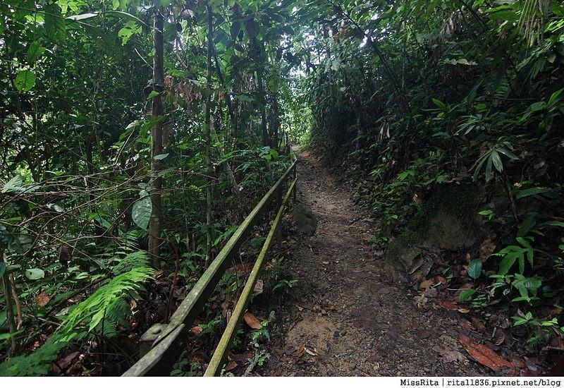 馬來西亞自由行 馬來西亞 沙巴 沙巴自由行 沙巴神山 神山公園 KinabaluPark Nabalu PORINGHOTSPRINGS 亞庇 波令溫泉 klook 客路 客路沙巴 客路自由行 客路沙巴行程60