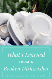 What I Learned From A Broken Dishwasher