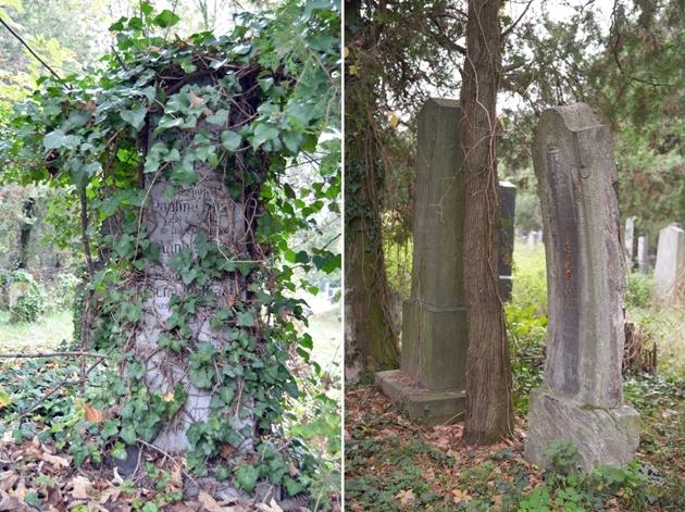 Zentralfriedhof_Jüdischer Friedhof_03