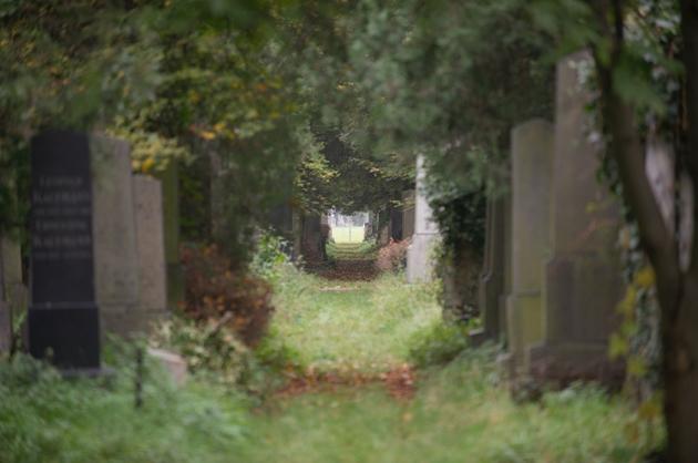 Zentralfriedhof_Jüdischer Friedhof_13