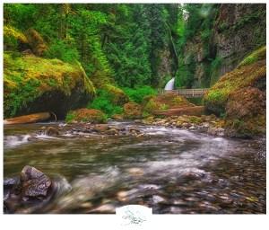 Vancouver, WA Photographer