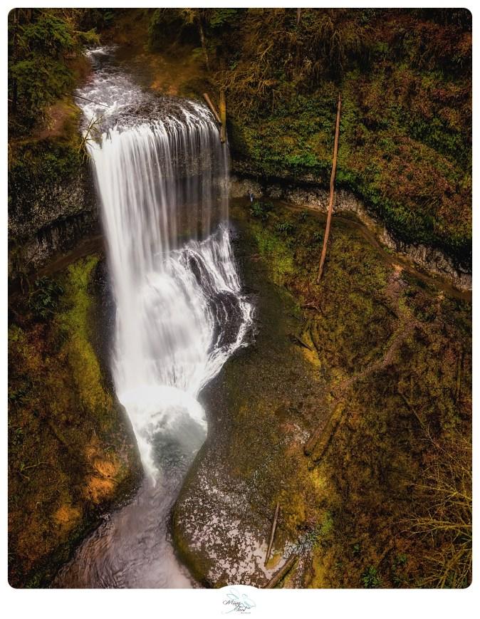 Silver Falls Park