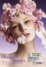 blossom dream image
