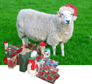 Santa sheep with gifts