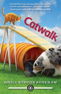cover of Catwalk