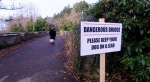peligro-puente-perros-suicidio