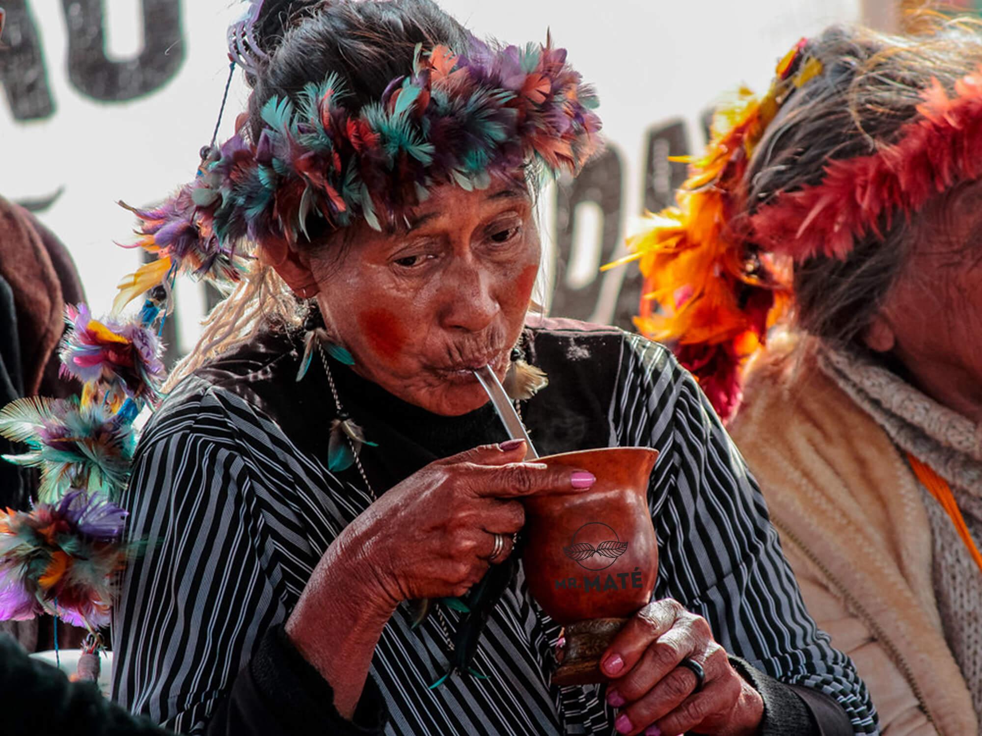 yerba mate guarani stam argentinie drinken