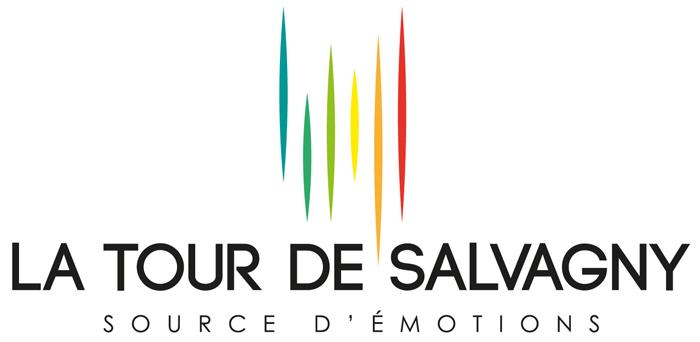 La tour de Salvagny partenaire de Mister France