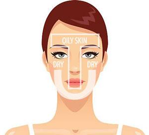 facial skin diagram