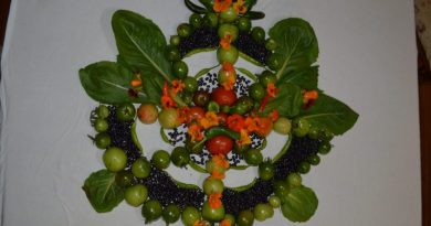 Vegetables arranged into a Mandala