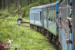 tren haputale