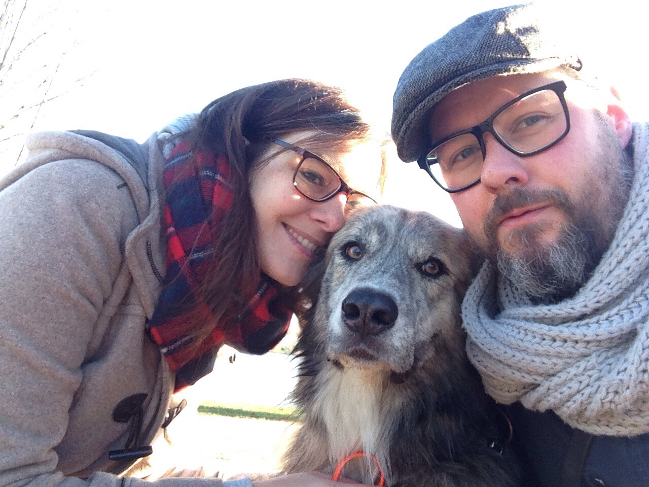 Urlaub mit Hund in Hamburg