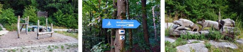 Spielplatz und Wegweiser Waldhistorischer Lehrpfad im Naturpark Steinwald