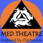MED Colour logo small