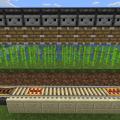 オブザーバーの全自動サトウキビ収穫機で栽培して自動発車で回収