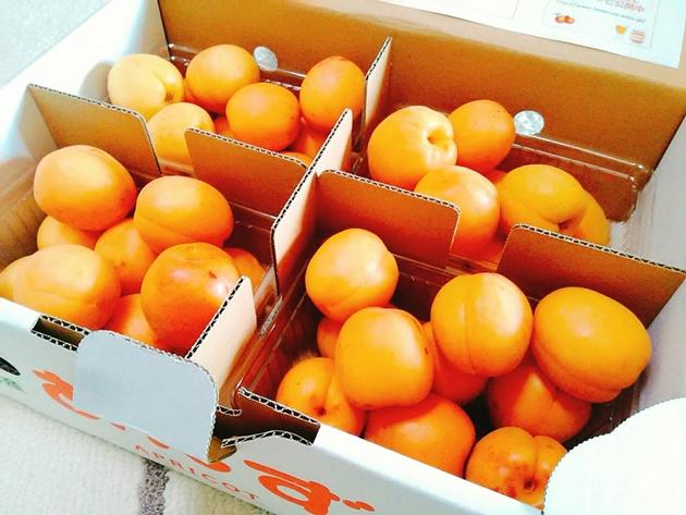杏オリジナル箱入