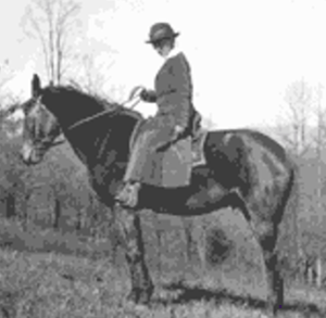 Ms. Lydia Holman and her horse going about her nursing responsibilities in the mountains of Mitchell County.