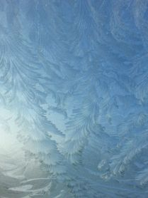 The windshield of friend's car. To drive or just sit here and admire the beauty? Decisions, decisions...