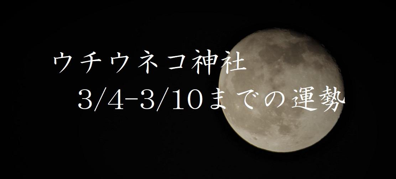 【ウチウネコ神社】3/4~3/10までの運勢