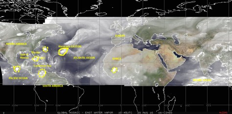 Mosaic of satellite images showing water-vapor in the atmosphere over the Atlantic and Indian ocean basins on Sunday 28 August 2016