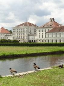 Schloss Nymphenburg und Enten
