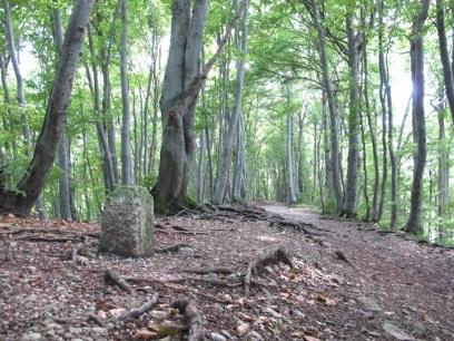 Schöner Wander- und Pilgerweg. Bildquelle: Robert Thaller