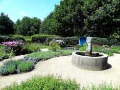 Der Duftgarten im Rhododendronpark Bremen.