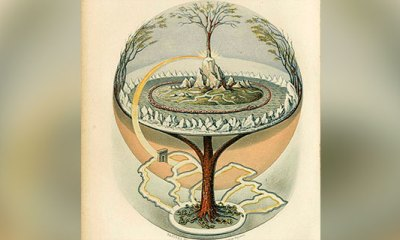 ¿Qué es el árbol de la vida?
