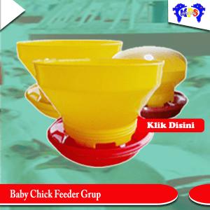 Baby chick feeder