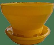 BCF super kuning kuning