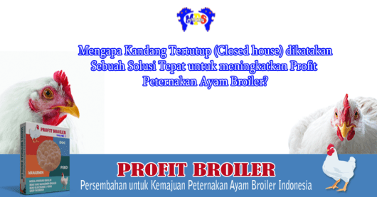 closed-house-broiler